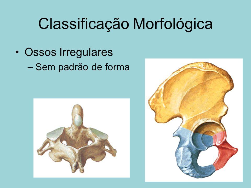 Classificação Morfológica Ossos Irregulares –Sem padrão de forma