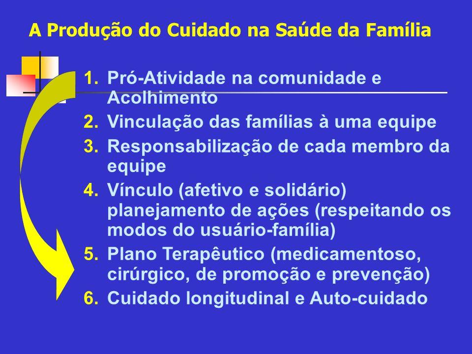 1.Pró-Atividade na comunidade e Acolhimento 2.Vinculação das famílias à uma equipe 3.Responsabilização de cada membro da equipe 4.Vínculo (afetivo e s