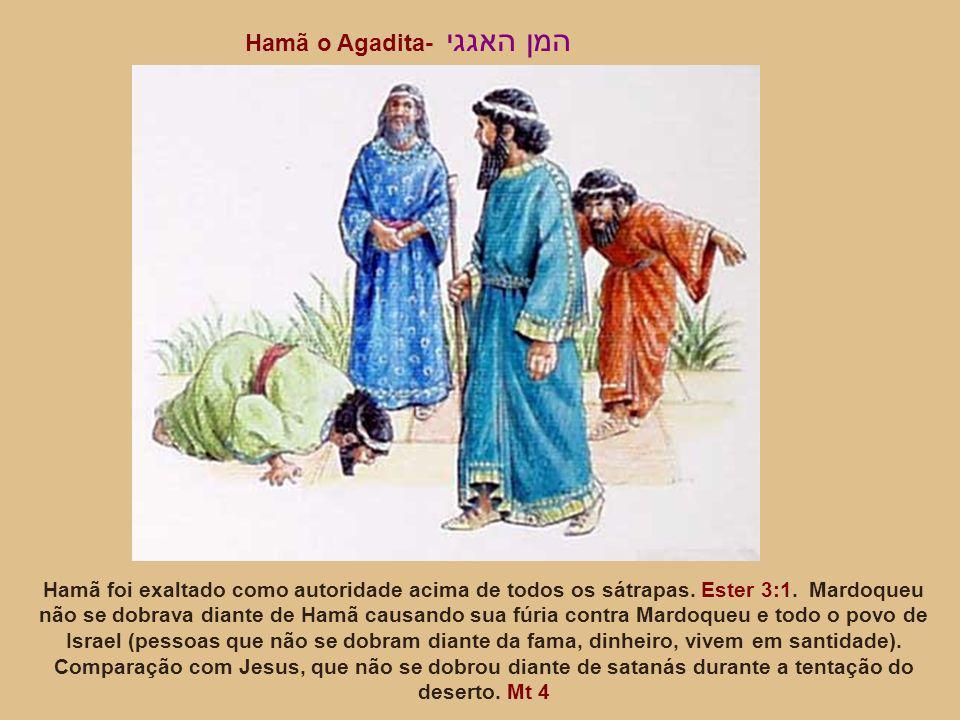 Hamã foi exaltado como autoridade acima de todos os sátrapas. Ester 3:1. Mardoqueu não se dobrava diante de Hamã causando sua fúria contra Mardoqueu e