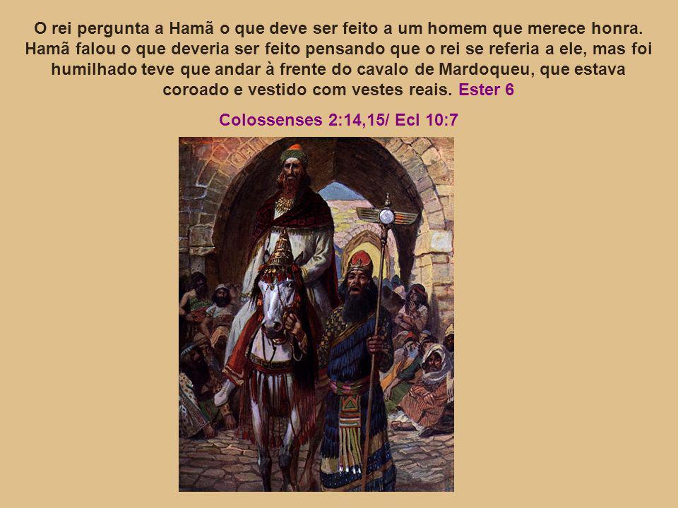 O rei pergunta a Hamã o que deve ser feito a um homem que merece honra.
