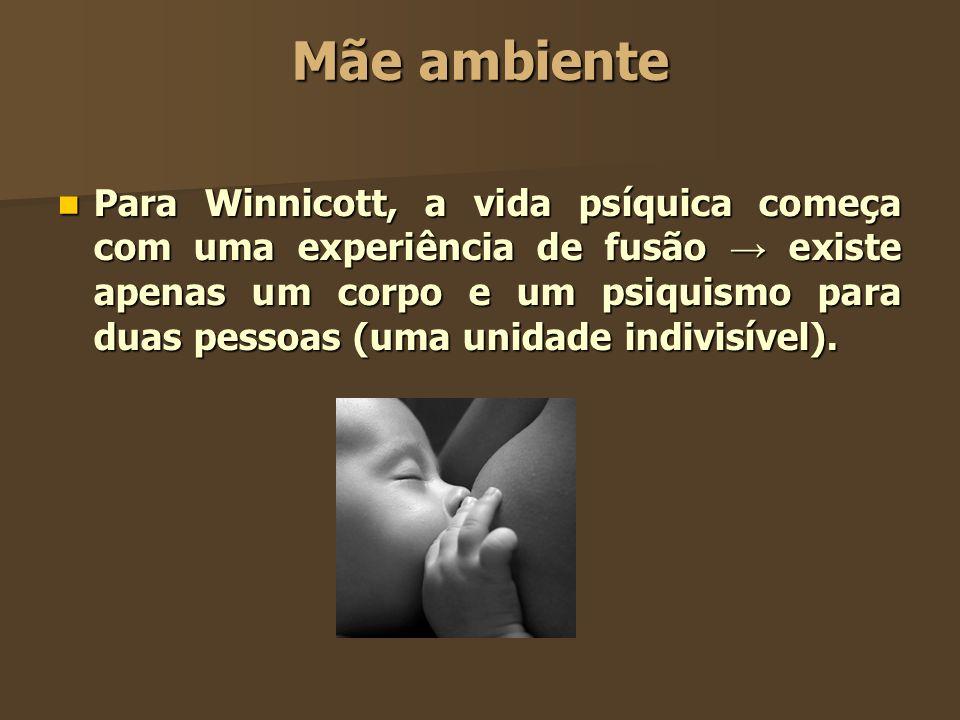 Mãe ambiente Para Winnicott, a vida psíquica começa com uma experiência de fusão existe apenas um corpo e um psiquismo para duas pessoas (uma unidade