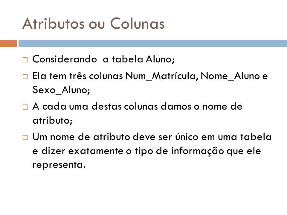 Atributos ou Colunas Considerando a tabela Aluno; Ela tem três colunas Num_Matrícula, Nome_Aluno e Sexo_Aluno; A cada uma destas colunas damos o nome de atributo; Um nome de atributo deve ser único em uma tabela e dizer exatamente o tipo de informação que ele representa.