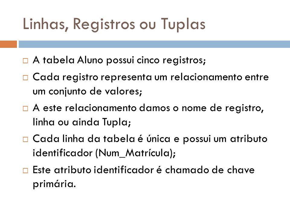 Linhas, Registros ou Tuplas A tabela Aluno possui cinco registros; Cada registro representa um relacionamento entre um conjunto de valores; A este relacionamento damos o nome de registro, linha ou ainda Tupla; Cada linha da tabela é única e possui um atributo identificador (Num_Matrícula); Este atributo identificador é chamado de chave primária.