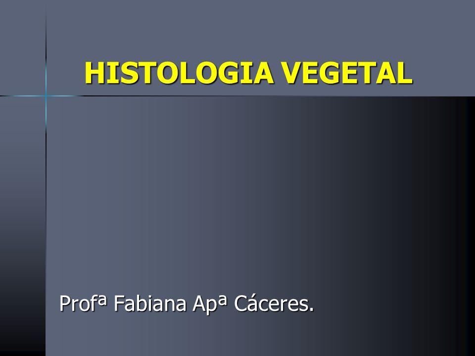 HISTOLOGIA VEGETAL Profª Fabiana Apª Cáceres.