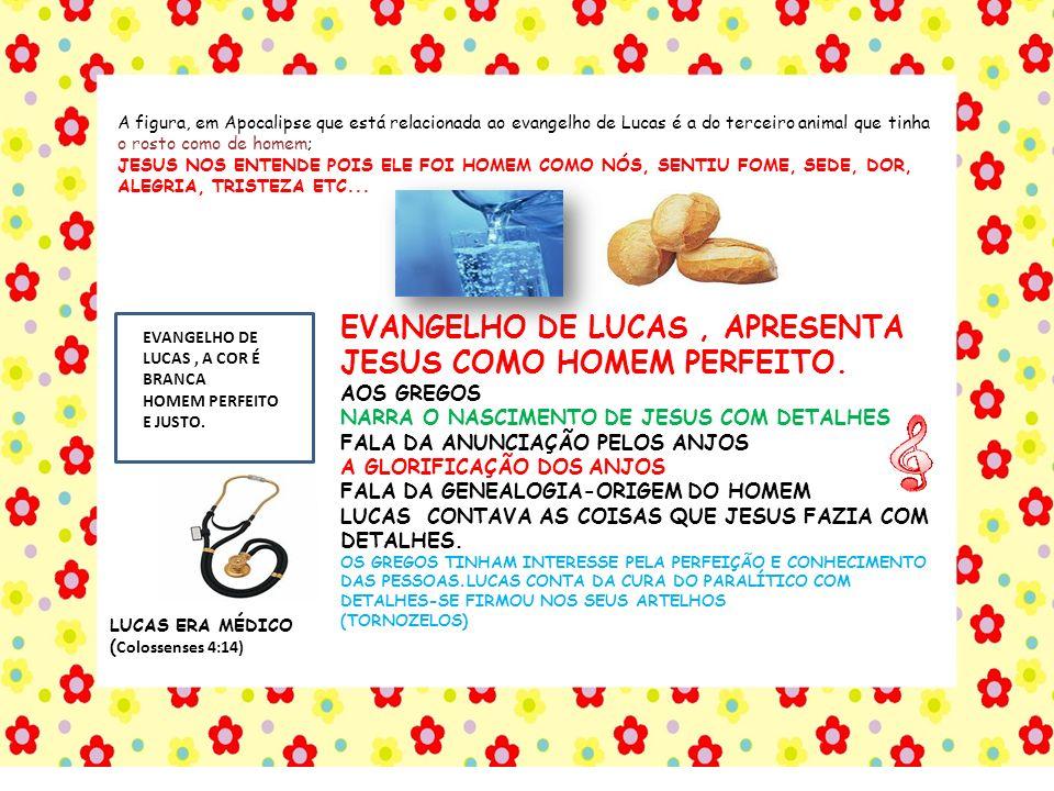 EVANGELHO DE LUCAS, APRESENTA JESUS COMO HOMEM PERFEITO. AOS GREGOS NARRA O NASCIMENTO DE JESUS COM DETALHES FALA DA ANUNCIAÇÃO PELOS ANJOS A GLORIFIC