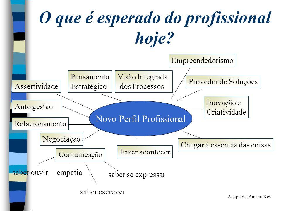 O que é esperado do profissional hoje? Visão Integrada dos Processos Empreendedorismo Novo Perfil Profissional Provedor de Soluções Inovação e Criativ