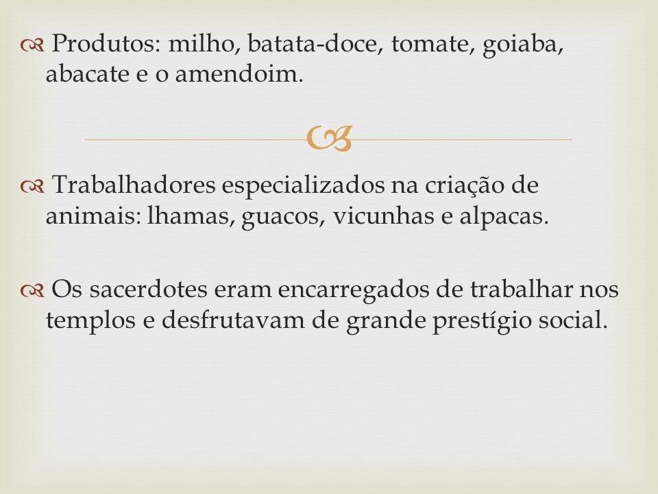 Produtos: milho, batata-doce, tomate, goiaba, abacate e o amendoim. Trabalhadores especializados na criação de animais: lhamas, guacos, vicunhas e alp
