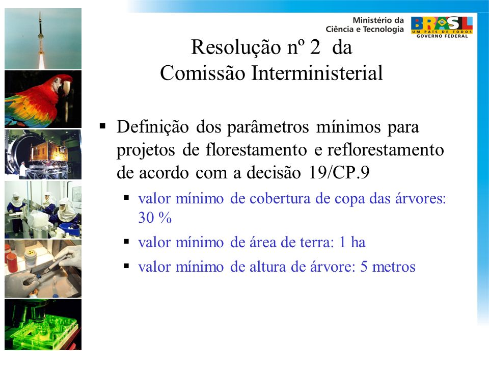 Resolução nº 2 da Comissão Interministerial Definição dos parâmetros mínimos para projetos de florestamento e reflorestamento de acordo com a decisão