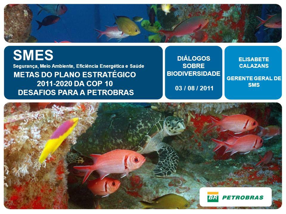 SMES Segurança, Meio Ambiente, Eficiência Energética e Saúde METAS DO PLANO ESTRATÉGICO 2011-2020 DA COP 10 DESAFIOS PARA A PETROBRAS 03 / 08 / 2011 D