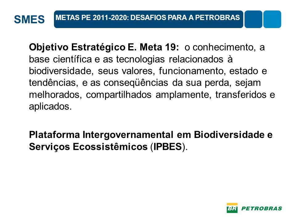 SMES Objetivo Estratégico E. Meta 19: o conhecimento, a base científica e as tecnologias relacionados à biodiversidade, seus valores, funcionamento, e