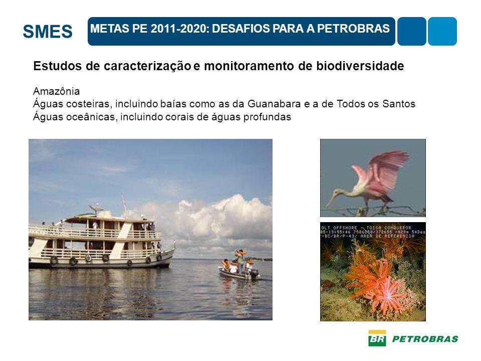 SMES METAS PE 2011-2020: DESAFIOS PARA A PETROBRAS Estudos de caracterização e monitoramento de biodiversidade Amazônia Águas costeiras, incluindo baías como as da Guanabara e a de Todos os Santos Águas oceânicas, incluindo corais de águas profundas