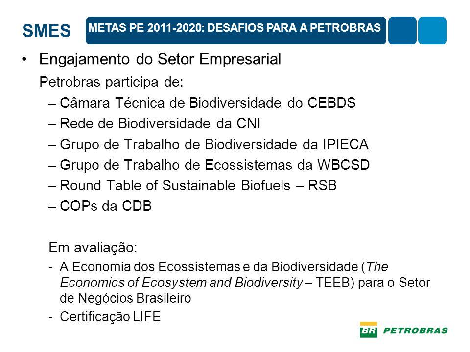 SMES Engajamento do Setor Empresarial Petrobras participa de: –Câmara Técnica de Biodiversidade do CEBDS –Rede de Biodiversidade da CNI –Grupo de Trabalho de Biodiversidade da IPIECA –Grupo de Trabalho de Ecossistemas da WBCSD –Round Table of Sustainable Biofuels – RSB –COPs da CDB Em avaliação: -A Economia dos Ecossistemas e da Biodiversidade (The Economics of Ecosystem and Biodiversity – TEEB) para o Setor de Negócios Brasileiro -Certificação LIFE METAS PE 2011-2020: DESAFIOS PARA A PETROBRAS