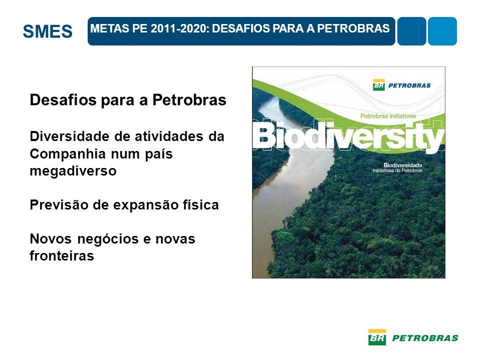 SMES Desafios para a Petrobras Diversidade de atividades da Companhia num país megadiverso Previsão de expansão física Novos negócios e novas fronteiras METAS PE 2011-2020: DESAFIOS PARA A PETROBRAS