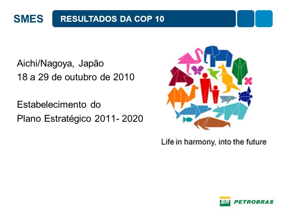 SMES Brazilian Biodiversity and Business Action CEBDS PARTICIPAÇÃO DO SETOR EMPRESARIAL NA COP 10 The International Business and Ecosystems Dialogue – WBCSD/IUCN
