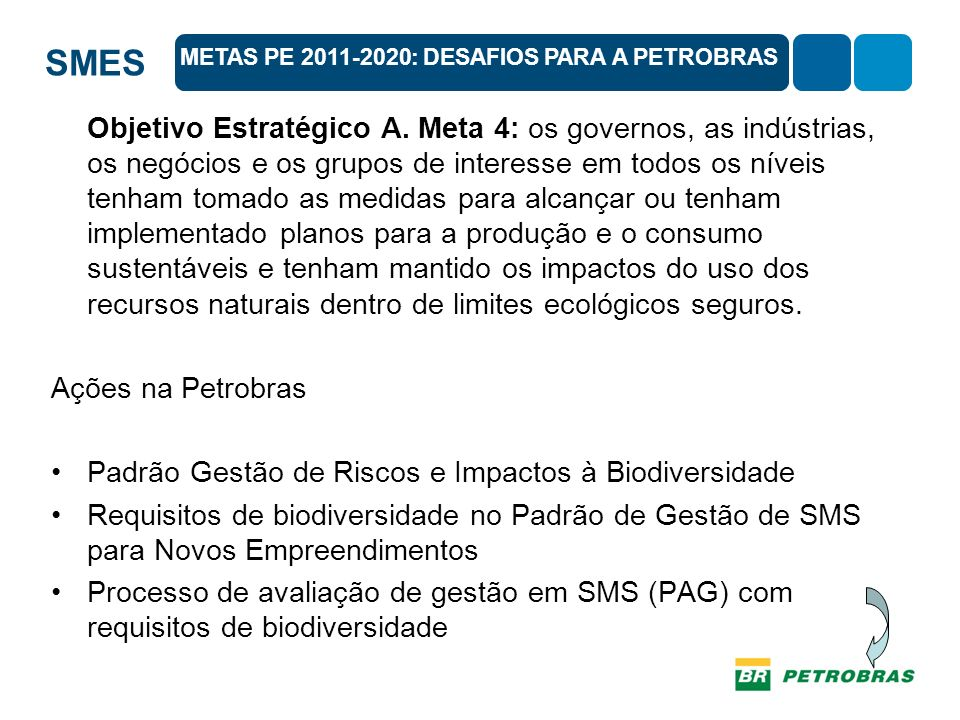 SMES Objetivo Estratégico A. Meta 4: os governos, as indústrias, os negócios e os grupos de interesse em todos os níveis tenham tomado as medidas para