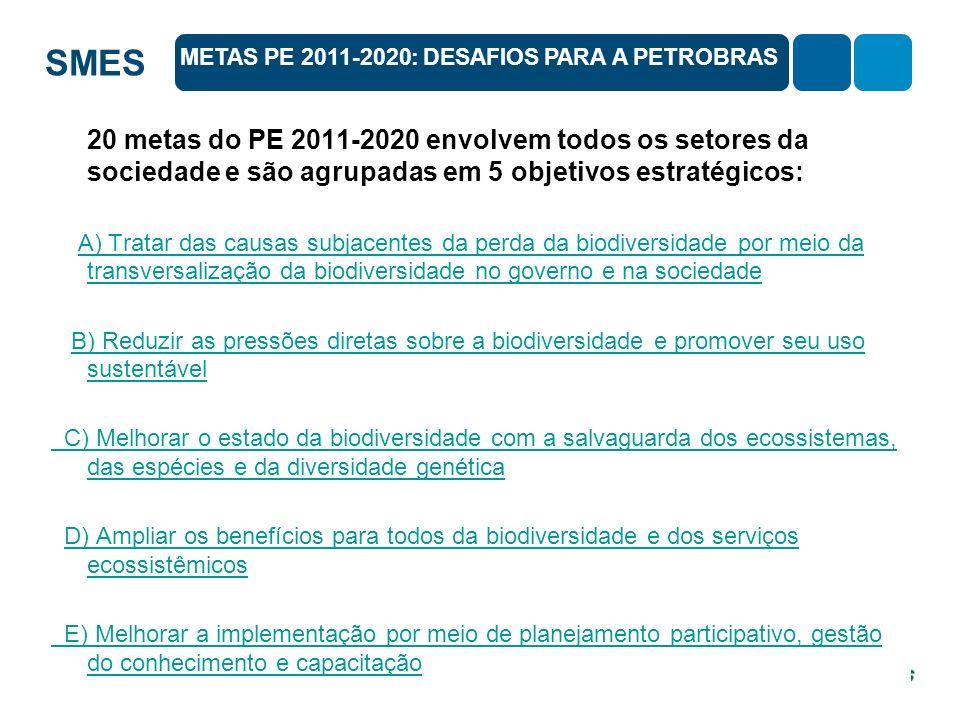 SMES 20 metas do PE 2011-2020 envolvem todos os setores da sociedade e são agrupadas em 5 objetivos estratégicos: A) Tratar das causas subjacentes da