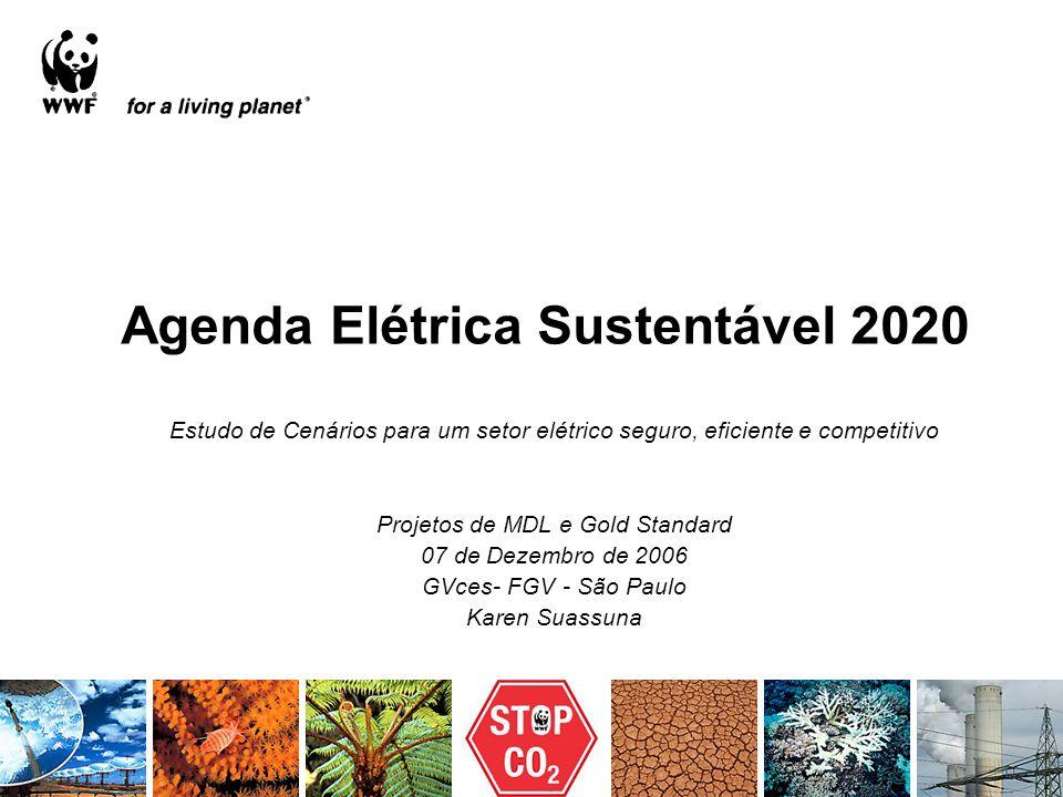 Agenda Elétrica Sustentável 2020 Estudo de Cenários para um setor elétrico seguro, eficiente e competitivo Projetos de MDL e Gold Standard 07 de Dezem