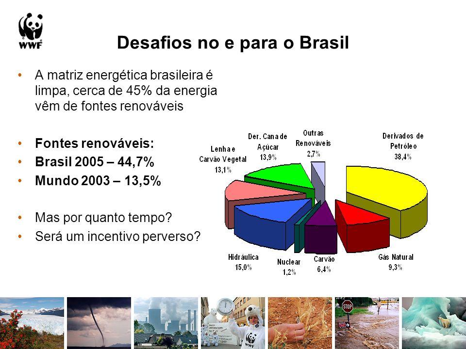 Desafios no e para o Brasil A matriz energética brasileira é limpa, cerca de 45% da energia vêm de fontes renováveis Fontes renováveis: Brasil 2005 –