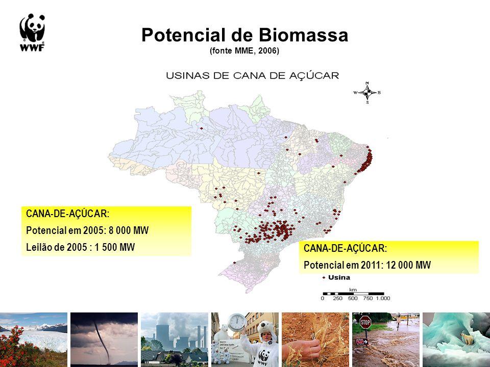 Potencial de Biomassa (fonte MME, 2006) CANA-DE-AÇÚCAR: Potencial em 2011: 12 000 MW CANA-DE-AÇÚCAR: Potencial em 2005: 8 000 MW Leilão de 2005 : 1 50
