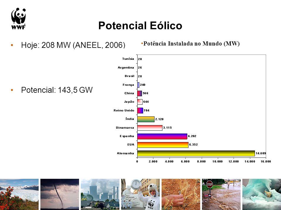Potencial Eólico Hoje: 208 MW (ANEEL, 2006) Potencial: 143,5 GW Potência Instalada no Mundo (MW)
