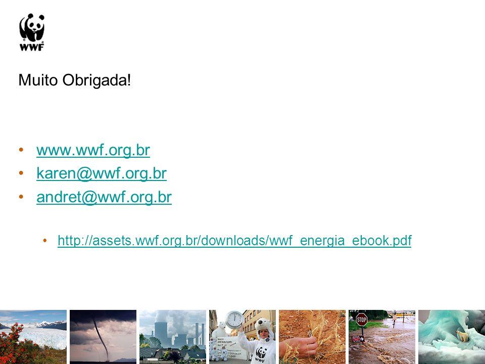 Muito Obrigada! www.wwf.org.br karen@wwf.org.br andret@wwf.org.br http://assets.wwf.org.br/downloads/wwf_energia_ebook.pdf
