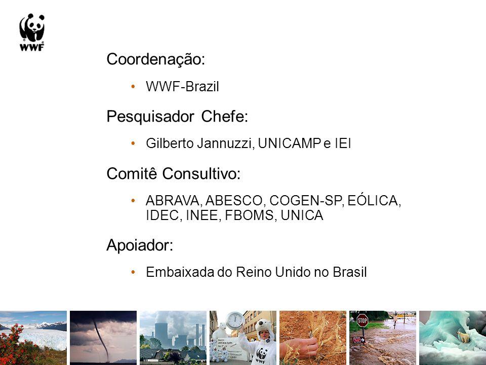 Coordenação: WWF-Brazil Pesquisador Chefe: Gilberto Jannuzzi, UNICAMP e IEI Comitê Consultivo: ABRAVA, ABESCO, COGEN-SP, EÓLICA, IDEC, INEE, FBOMS, UN