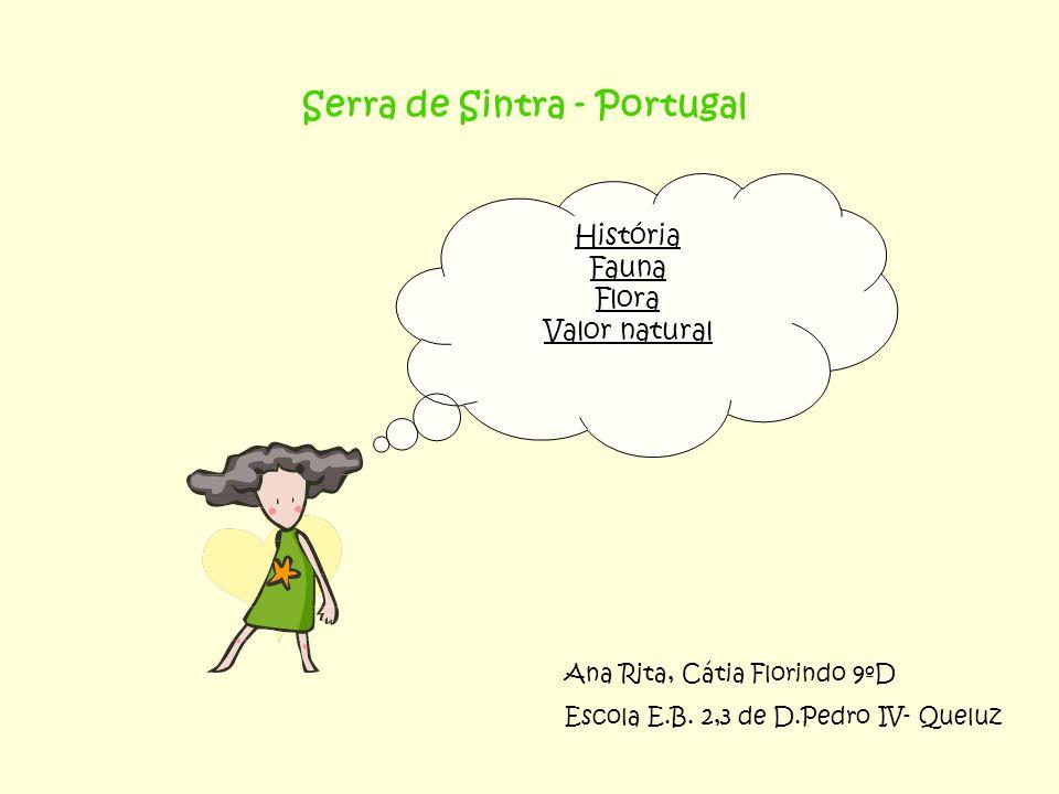 Serra de Sintra - Portugal História Fauna Flora Valor natural Ana Rita, Cátia Florindo 9ºD Escola E.B. 2,3 de D.Pedro IV- Queluz