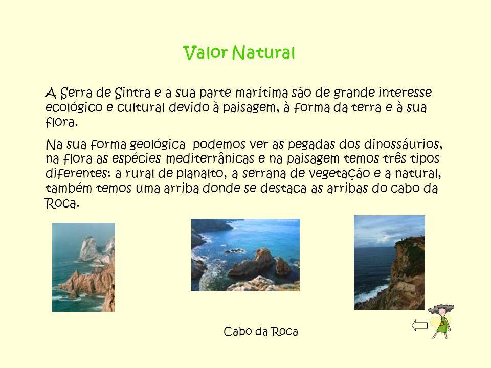 Valor Natural A Serra de Sintra e a sua parte marítima são de grande interesse ecológico e cultural devido à paisagem, à forma da terra e à sua flora.