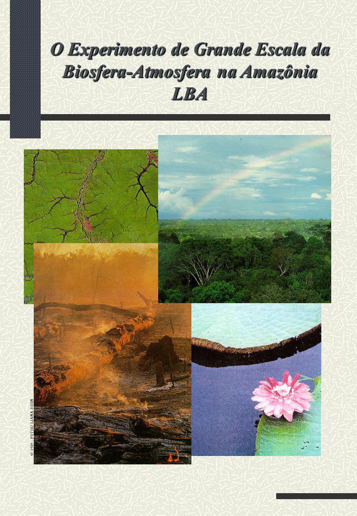 © 1989 - FOTOS/ LIANA JOHN O Experimento de Grande Escala da Biosfera-Atmosfera na Amazônia LBA LBA
