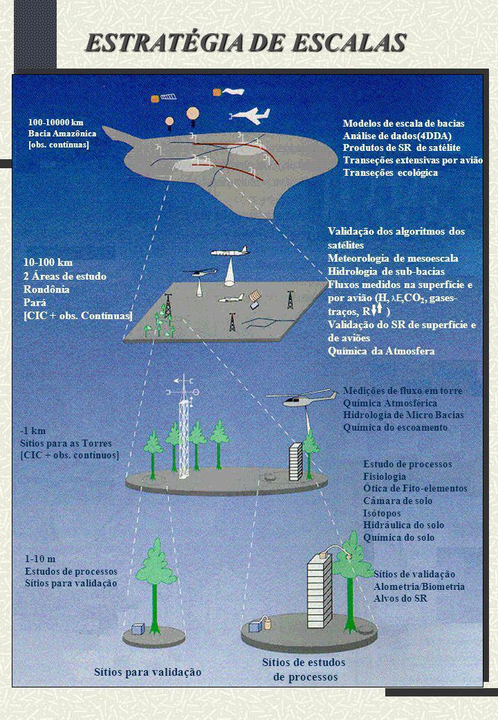 100-10000 km Bacia Amazônica [obs. contínuas] -1 km Sítios para as Torres [CIC + obs. contínuos] 1-10 m Estudos de processos Sítios para validação Sít