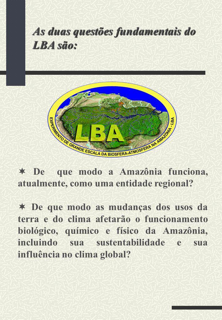 SISTEMA FÍSICO-CLIMÁTICO: Água e Energia QUÍMICA DA ATMOSFERA ARMAZENAMENTO E TROCAS DE CARBONO BIOGEOQUÍMICA Gases-Traços e Nutrientes HIDROLOGIA SUPERFICIAL E QUÍMICA DA ÁGUA USO DA TERRA E COBERTURA VEGETAL DIMENSÕES HUMANAS COMPONENTES DO LBA