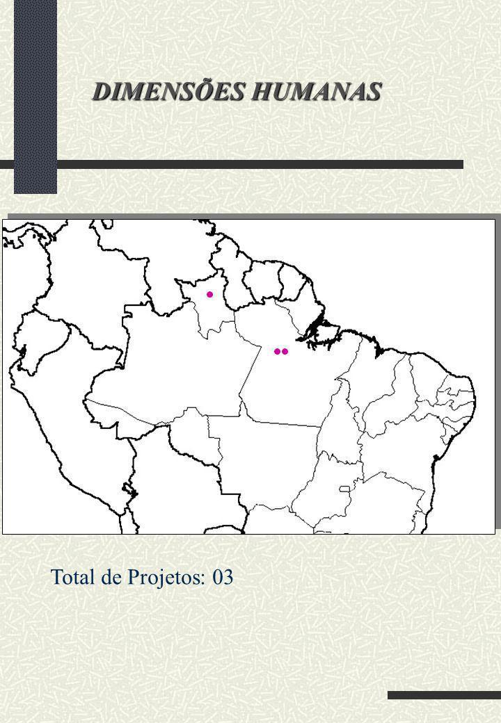 DIMENSÕES HUMANAS Total de Projetos: 03