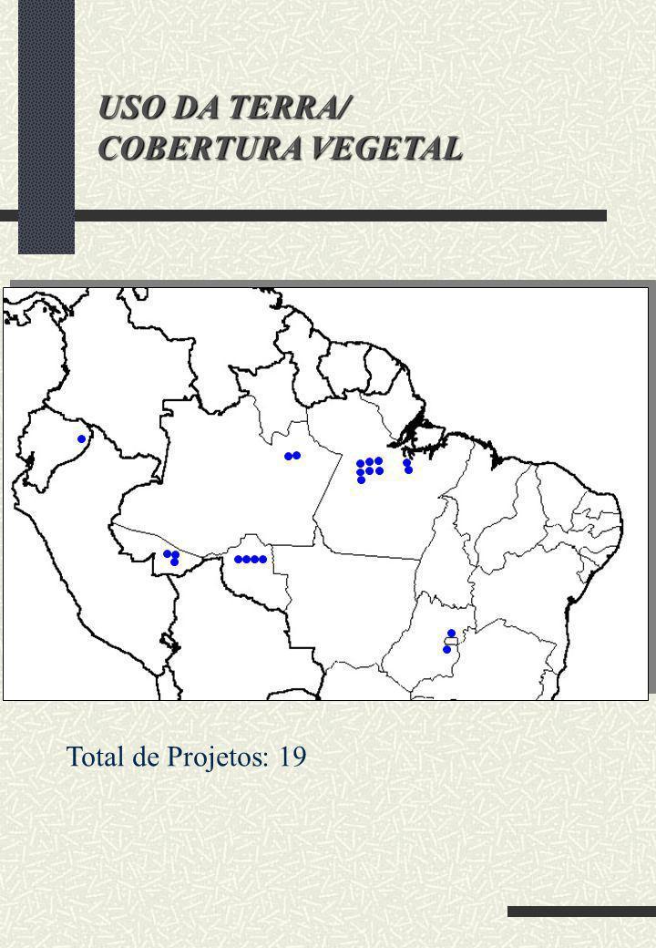 USO DA TERRA/ COBERTURA VEGETAL Total de Projetos: 19