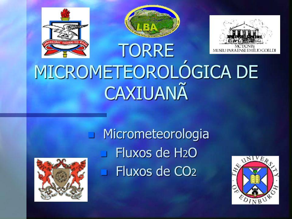 TORRE MICROMETEOROLÓGICA DE CAXIUANÃ n Micrometeorologia n Fluxos de H 2 O n Fluxos de CO 2
