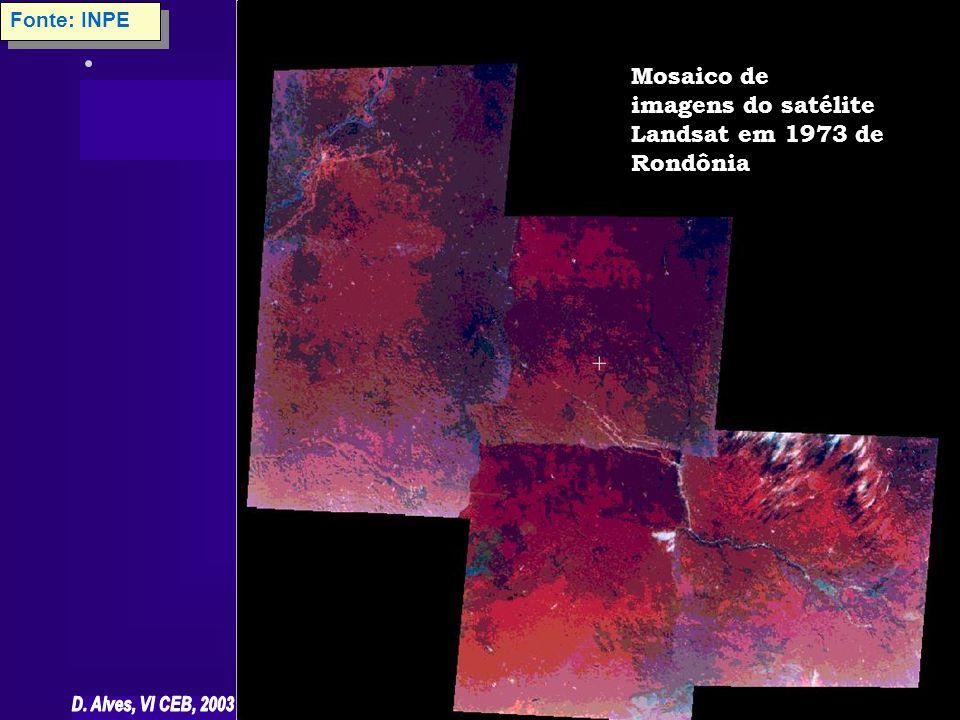 Fonte: INPE Mosaico de imagens do satélite Landsat em 1973 de Rondônia