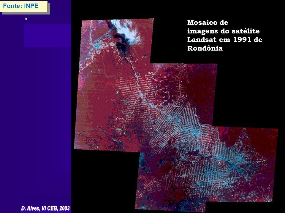 Fonte: INPE Mosaico de imagens do satélite Landsat em 1991 de Rondônia