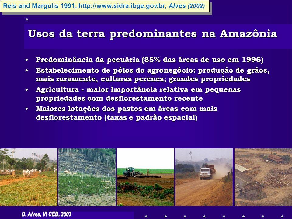 Usos da terra predominantes na Amazônia Predominância da pecuária (85% das áreas de uso em 1996) Predominância da pecuária (85% das áreas de uso em 19