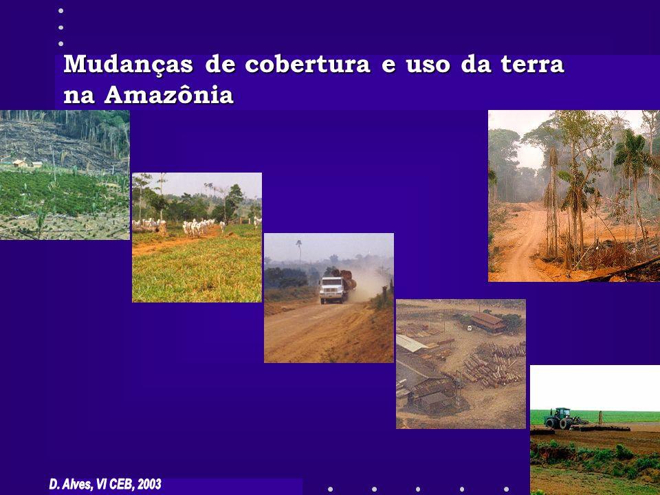 Fonte: INPE Mosaico de imagens do satélite Landsat em 1999 de Rondônia