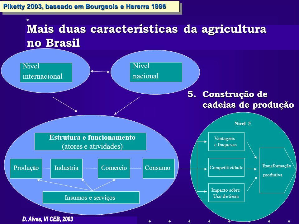 Estrutura e funcionamento (atores e atividades) ComercioConsumoProduçãoIndustria Insumos e serviços Nivel internacional Transformação produtiva Compet