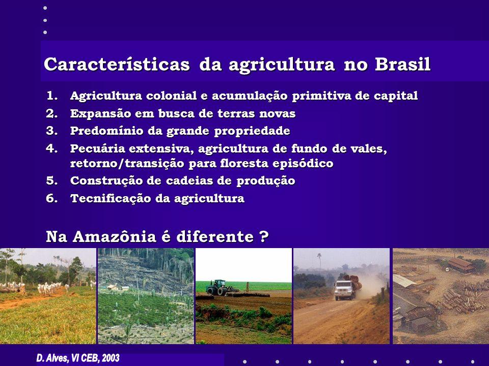 1.Agricultura colonial e acumulação primitiva de capital 2.Expansão em busca de terras novas 3.Predomínio da grande propriedade 4.Pecuária extensiva,