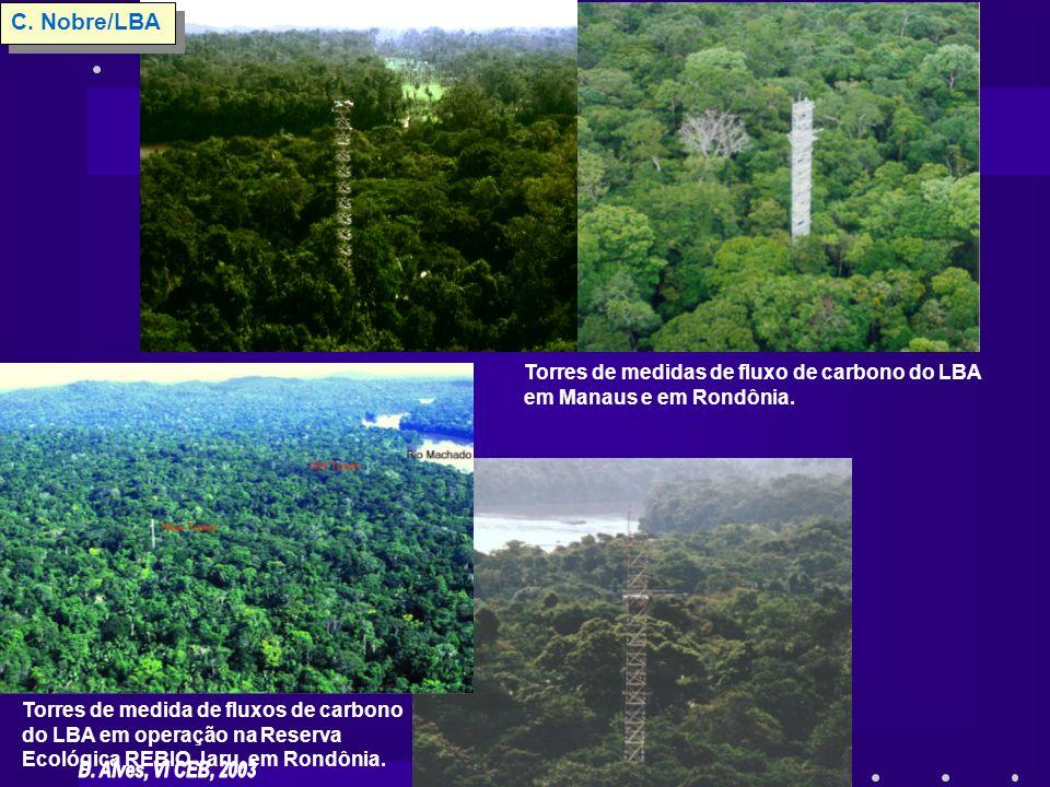 Torres de medida de fluxos de carbono do LBA em operação na Reserva Ecológica REBIO Jaru, em Rondônia. Torres de medidas de fluxo de carbono do LBA em