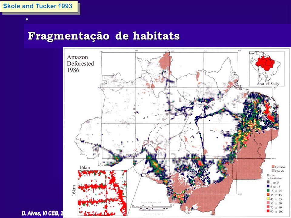 Fragmentação de habitats Skole and Tucker 1993