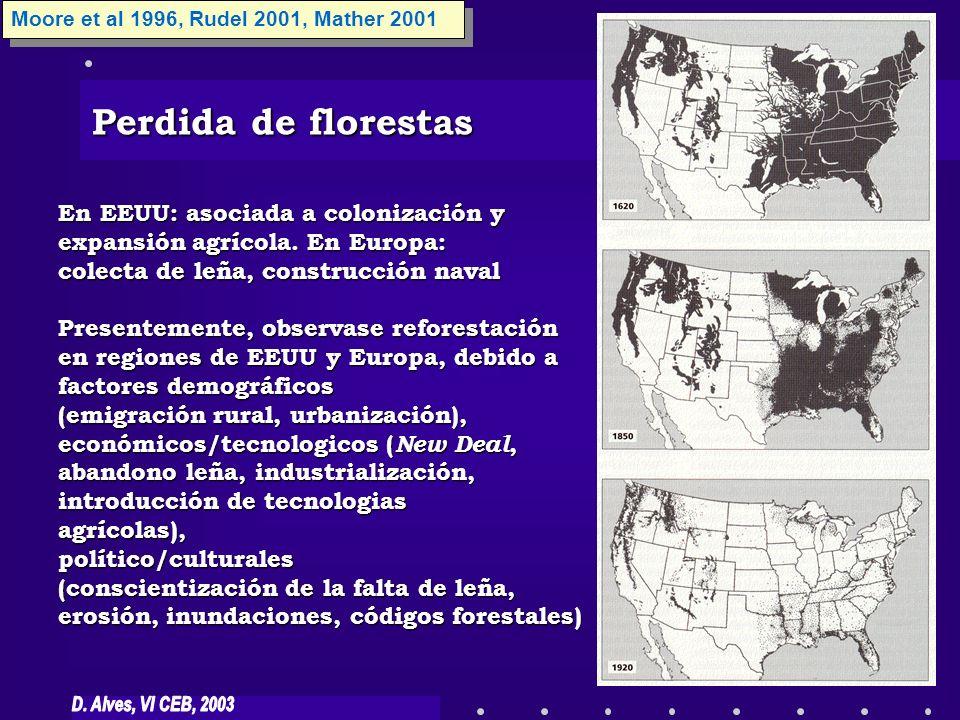 Perdida de florestas Moore et al 1996, Rudel 2001, Mather 2001 En EEUU: asociada a colonización y expansión agrícola. En Europa: colecta de leña, cons
