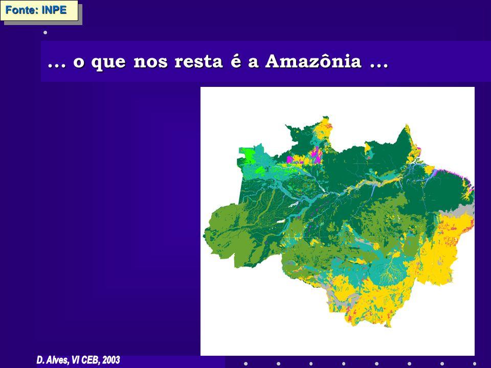 Usos da terra predominantes na Amazônia Predominância da pecuária (85% das áreas de uso em 1996) Predominância da pecuária (85% das áreas de uso em 1996) Estabelecimento de pólos do agronegócio: produção de grãos, mais raramente, culturas perenes; grandes propriedades Estabelecimento de pólos do agronegócio: produção de grãos, mais raramente, culturas perenes; grandes propriedades Agricultura - maior importância relativa em pequenas propriedades com desflorestamento recente Agricultura - maior importância relativa em pequenas propriedades com desflorestamento recente Maiores lotações dos pastos em áreas com mais desflorestamento (taxas e padrão espacial) Maiores lotações dos pastos em áreas com mais desflorestamento (taxas e padrão espacial) Reis and Margulis 1991, http://www.sidra.ibge.gov.br, Alves (2002)