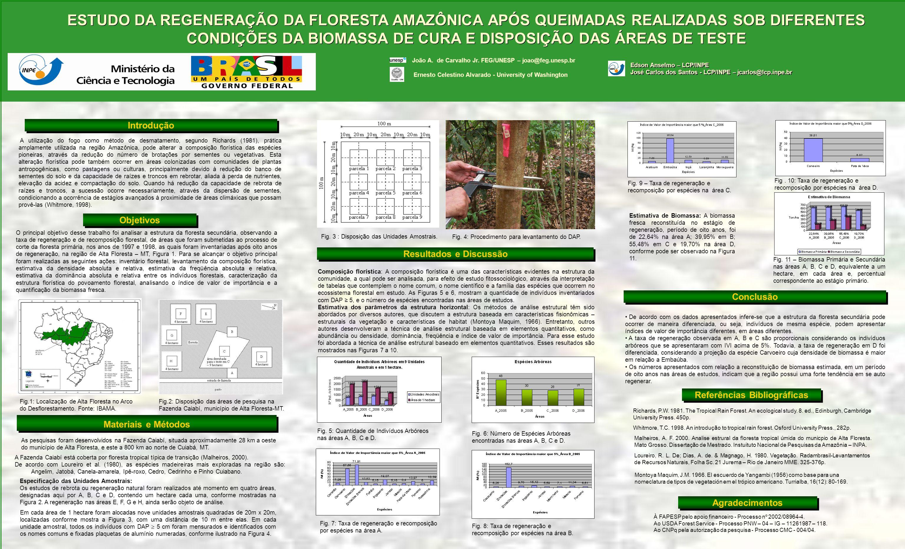 ESTUDO DA REGENERAÇÃO DA FLORESTA AMAZÔNICA APÓS QUEIMADAS REALIZADAS SOB DIFERENTES CONDIÇÕES DA BIOMASSA DE CURA E DISPOSIÇÃO DAS ÁREAS DE TESTE Int