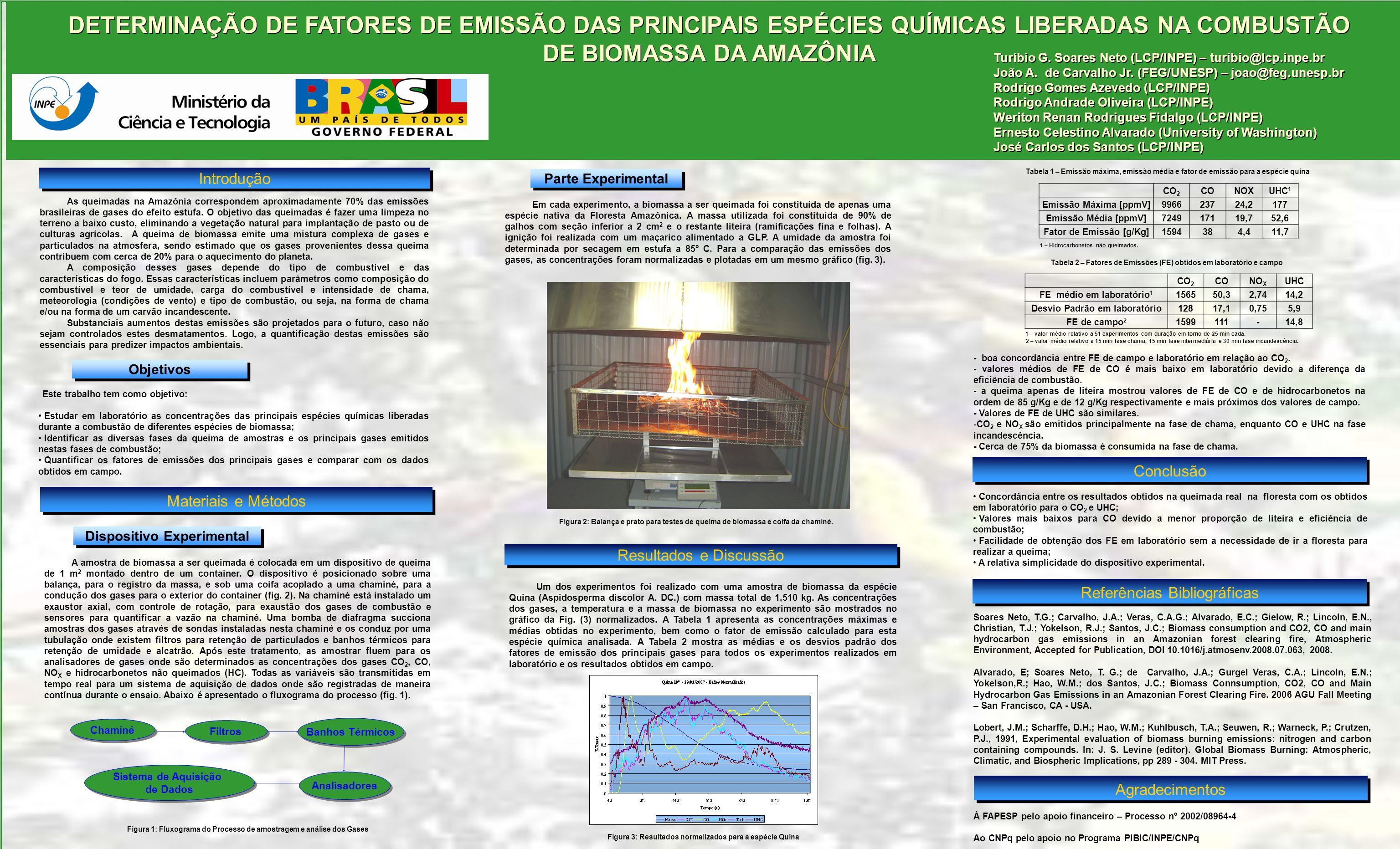 DETERMINAÇÃO DE FATORES DE EMISSÃO DAS PRINCIPAIS ESPÉCIES QUÍMICAS LIBERADAS NA COMBUSTÃO DE BIOMASSA DA AMAZÔNIA Introdução As queimadas na Amazônia