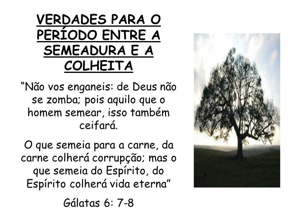 Contexto - Dicas de vida da parte de Deus: 5:25 – ande e viva no Espírito 6:2 – ajude aos outros 6:3 – seja humilde 6:5 – cumpra suas obrigações 6:9 – persevere no bem