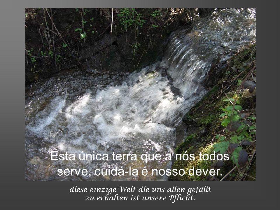 die Erde ist uns nur geliehen die Tiere die Pflanzen das Licht A terra nos é somente emprestada, os animais, as plantas a luz..