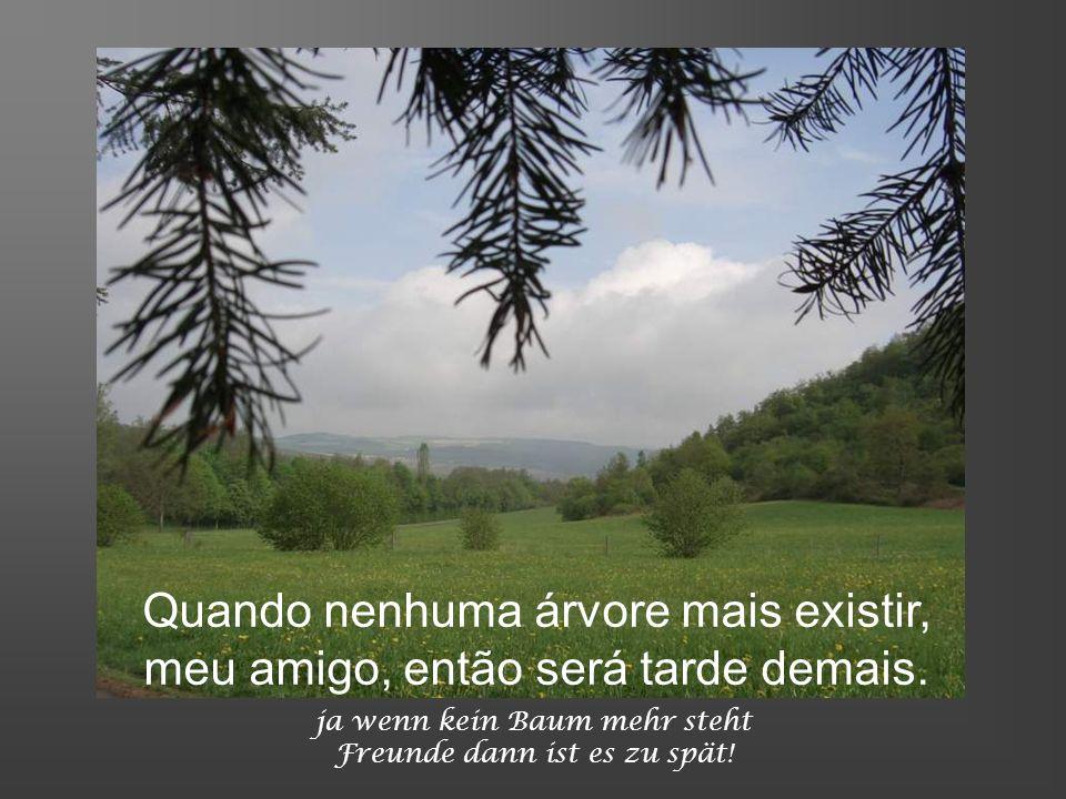 wo grüne Wiesen umfangt siehst du heute nur Sand, nur Sand ! Onde o verde ao longe tu vês, hoje só arreia e seca ?