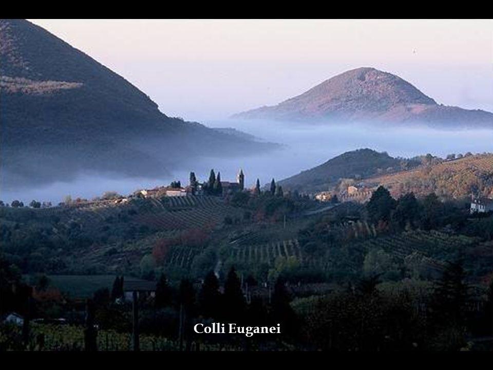 Colli Euganei – Região de colinas de origem vulcânica a poucos quilômetros de Padova ARREDORES DE PADOVA